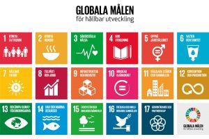 globala_malen_svn